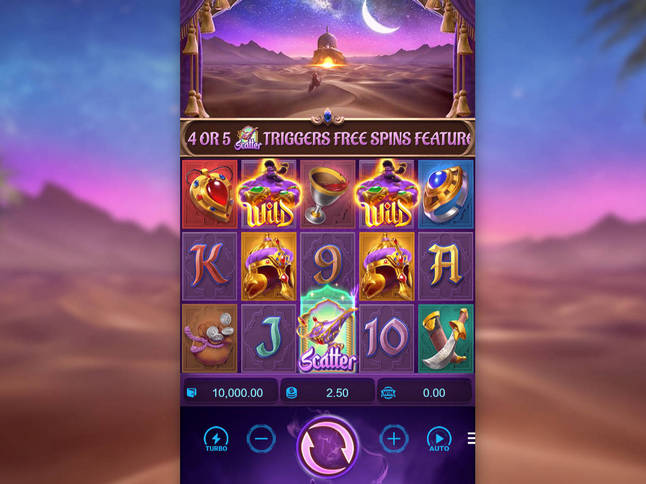 Genie's 3 Wishes